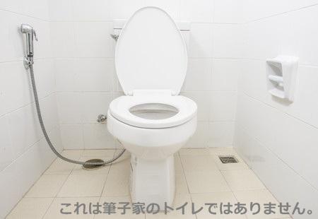 トイレ ブラシ 捨て 方