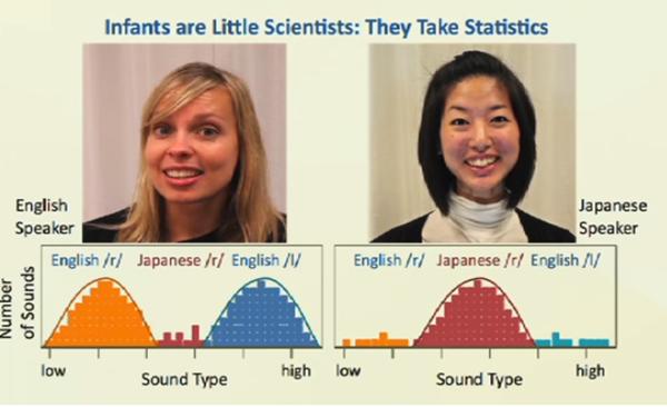 母語の音の分布が増える