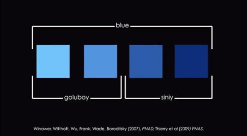 4種類の青