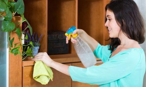 掃除をする方法