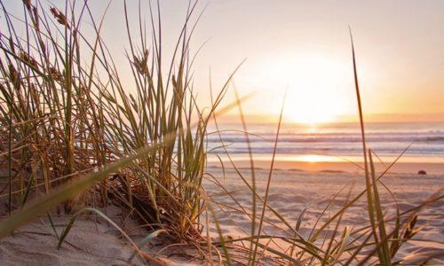 夜明けの海岸