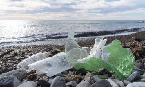 海辺のゴミ
