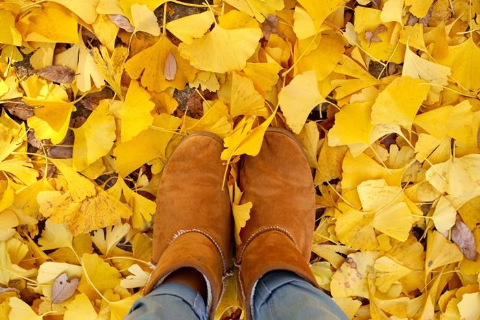 イチョウの葉とブーツの足元。