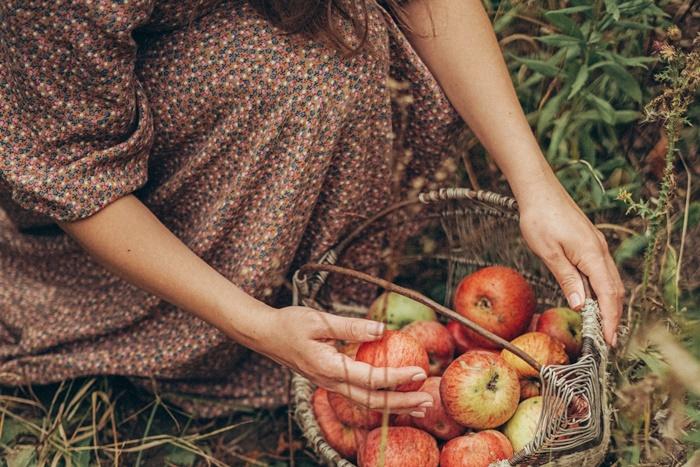 りんごをかごに入れる
