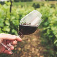 グラスの中のワイン