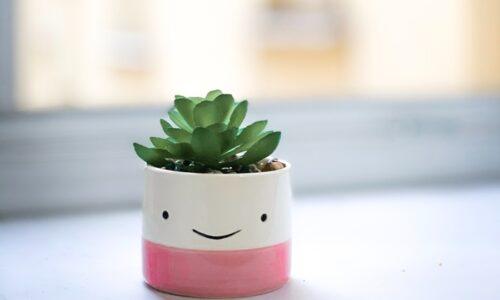 かわいい植木鉢