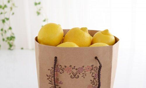 紙袋に入ったレモン